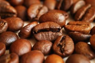 senseo sartista koffie trends