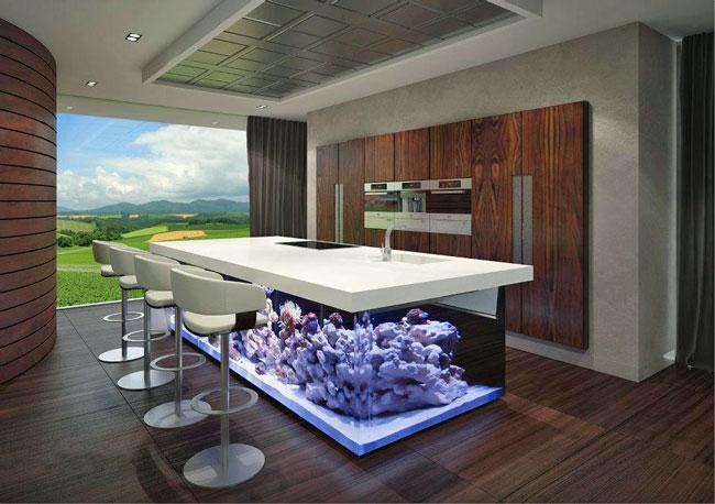 Van Boven Keukens : De ocean keuken: vis bakken boven het aquarium